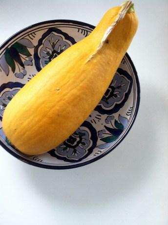 Squash from George's Veggie Garden