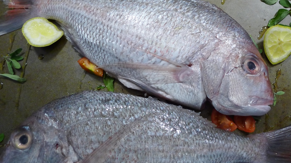 Wild Caught Pink Snappers